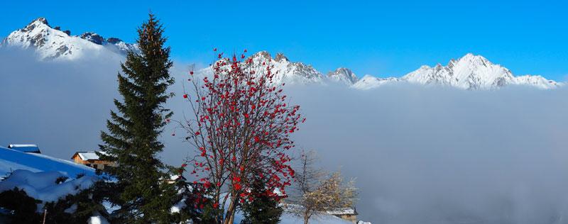 Vue sur les sommets en hiver